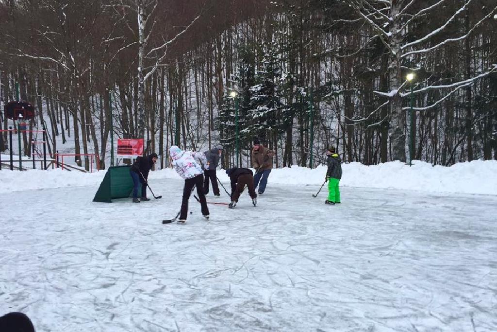 hokejové ihrisko